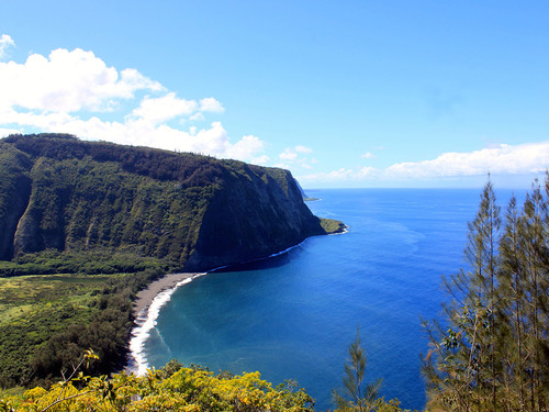 Hilo (Big Island) Onomea Sightseeing Shore Excursion Booking