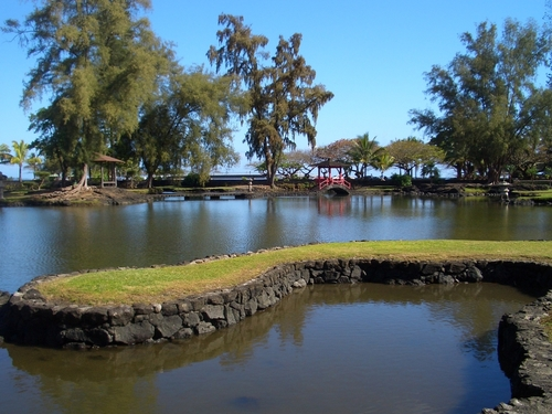 Hilo (Big Island) Honoli'i Sightseeing Tour Tickets