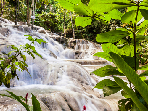 Montego Bay  Jamaica dunns river falls  Cruise Excursion
