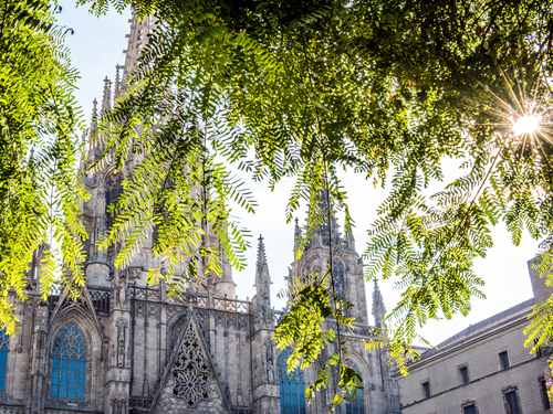 Barcelona Spain Basilica Tour Reservations