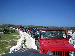 Jeep Excursion, Island Highlights, Punta Sur Park, Snorkeling and Lunch from Playa del Carmen