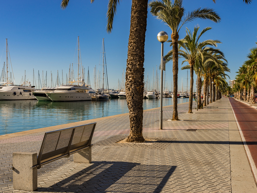 Palma de Mallorca Joan Miro Museum Shore Excursion Prices