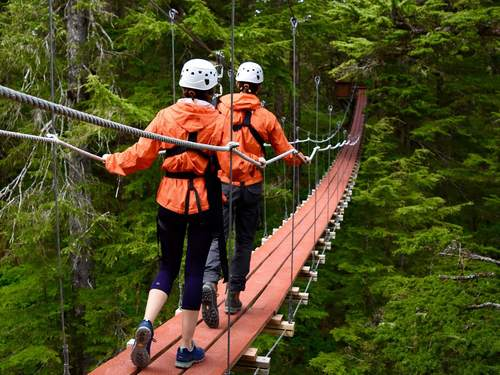 Juneau top tree zipline Excursion Booking