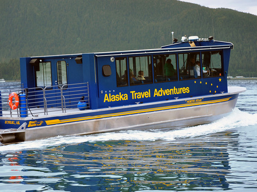 Juneau Sea Lions Cruise Excursion Cost