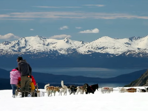 Juneau Helicopter and Dog Sled Excursion