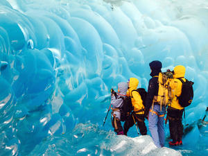 Juneau Mendenhall Glacier Trek Excursion