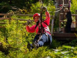 Juneau Ultimate Alaska Canopy and Zipline Excursion