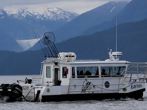 Juneau whale watching Cruise Excursion Tickets