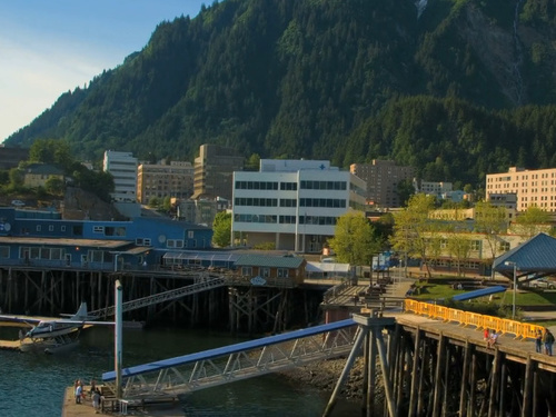 Juneau whale watching Cruise Excursion Prices