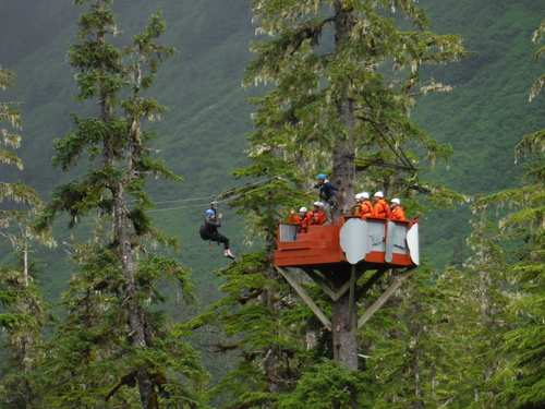 Juneau Alaska zipline Cruise Excursion Reservations