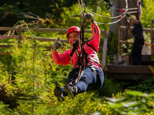 Juneau top tree zipline Cruise Excursion Tickets
