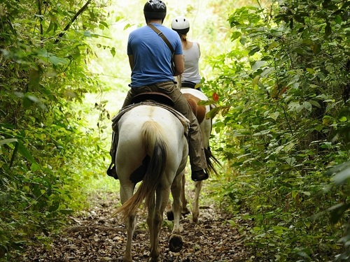 Roatan Honduras horseback riding Shore Excursion Reservations