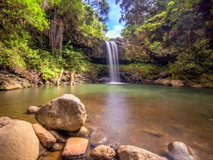 Kahului Maui Private Waterfalls and Rainforest Hiking Excursion