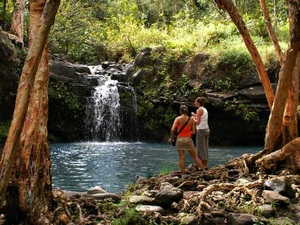 Kahului Maui Waterfalls and Rainforest Hiking Excursion