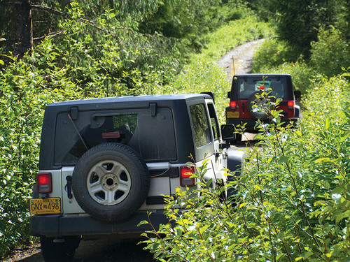 Ketchikan  Alaska rugged Reservations Jeep Excursion