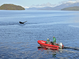 Ketchikan Alaska Boatman Adventure Excursion