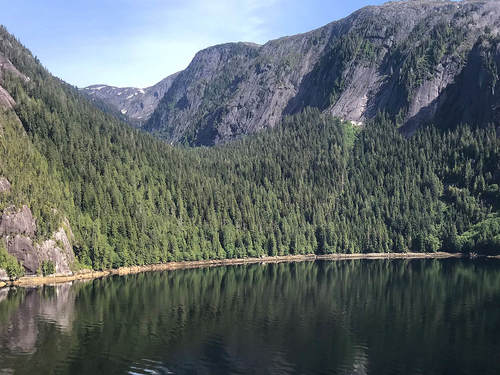 Ketchikan Misty Fjord National Monument Excursion Prices