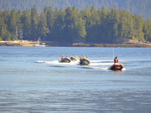 Ketchikan Back Country Zodiac Wildlife Adventure Excursion