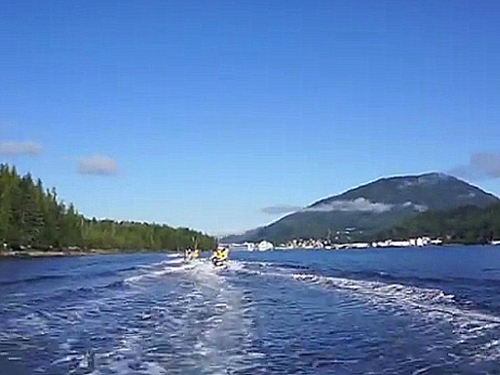 Ketchikan Alaska whale watching boat Shore Excursion Cost