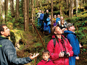 Ketchikan Rain Forest Island Adventure Excursion