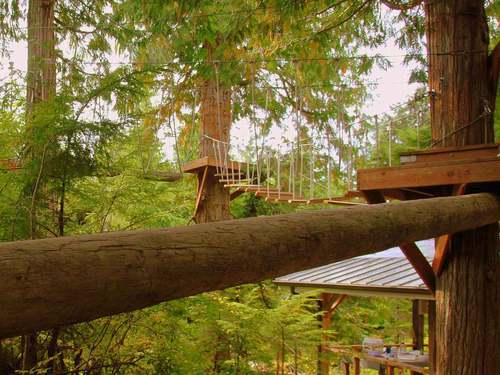 Ketchikan Alaska zipline Excursion Prices