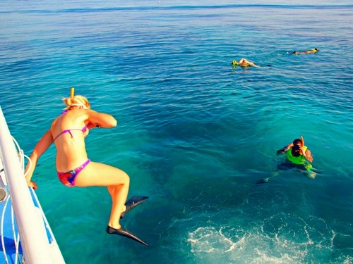 Key West Fury snorkel Excursion Tickets