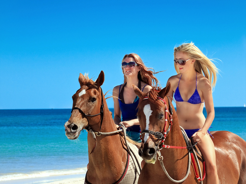 Cozumel horse ride Trip Prices