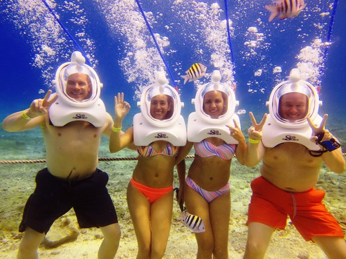 Cozumel marine life Tour Reservations