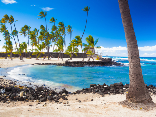 Kona (Kailua) captain cook Trip Prices