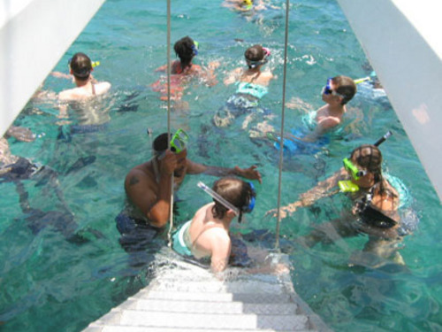 Montego Bay  Jamaica sail and snorkel Cruise Excursion