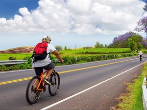 Lahaina Haleakala Ranch Sunrise Bike Ride Excursion