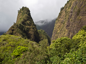 Lahaina Maui Iao Valley and Maui Tropical Plantation Excursion