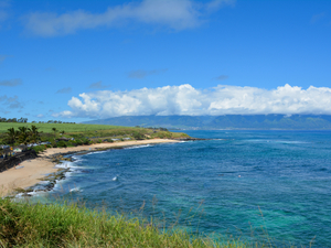 Lahaina Maui Private Morning Up Country Sightseeing Excursion