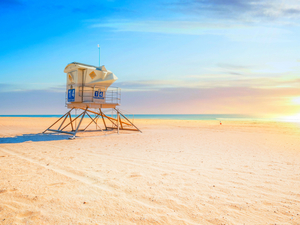 Los Angeles California Beaches - Huntington Beach, Long Beach, Venice Beach and Santa Monica Excursion