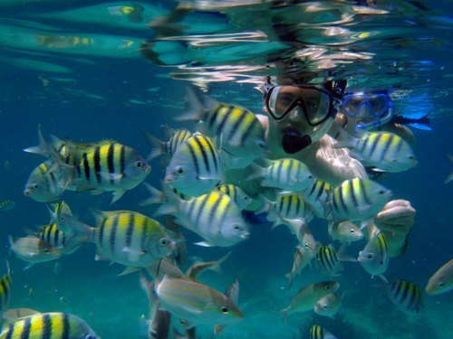 Grand Cayman  George Town snorkeling Cruise Excursion