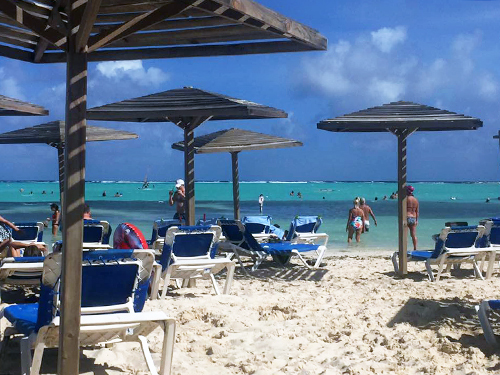 Bonaire flamingos Shore Excursion Booking