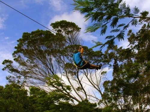Maui Hawaii zip line Cruise Excursion Reservations