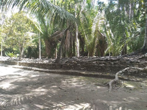 Mahahual Mayan Ruins Cruise Excursion Booking