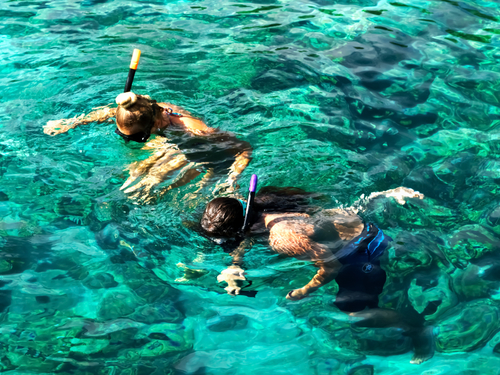 Cozumel Mexico unlimited snorkeling Excursion Cost