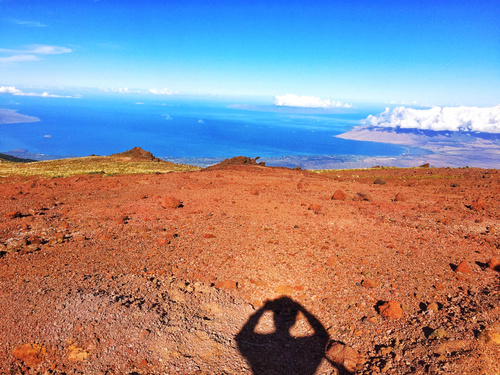 Maui (Lahaina) Haleakala Shore Excursion Booking