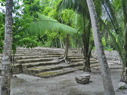Costa Maya Mexico Chacchoben Mayan Ruins Shore Excursion Cost