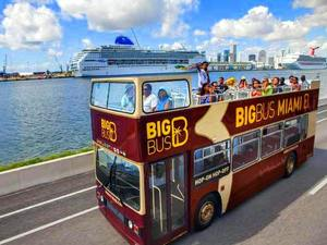 Miami Big Bus City Sightseeing Hop On Hop Off Excursion
