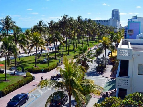 Miami south beach Trip Reviews