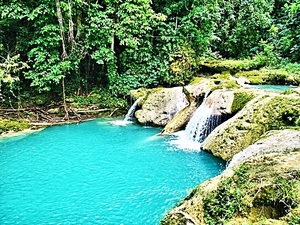 Montego Bay Blue Hole Excursion with Jamaican Lunch at Usain Bolt's Tracks and Records