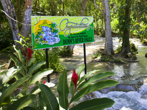Montego Bay Dunn's River Falls Tubing Excursion Booking
