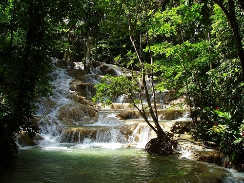 Montego Bay Jamaica Falls Tubing Tour Booking