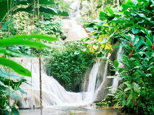 Montego Bay Jamaica Falls Tubing Excursion Booking