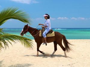 Mr. Sanchos Beach Horseback Riding Excursion in Cozumel