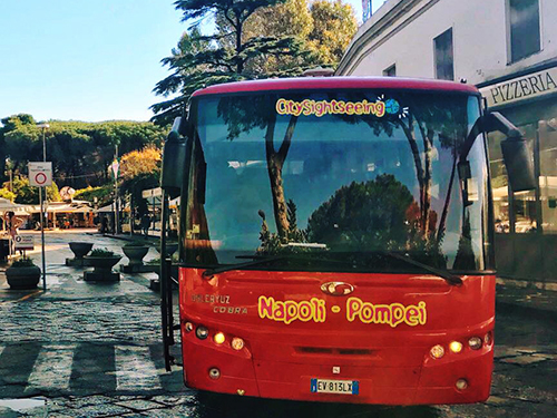 Naples Italy Vesuvius Sightseeing Excursion Prices