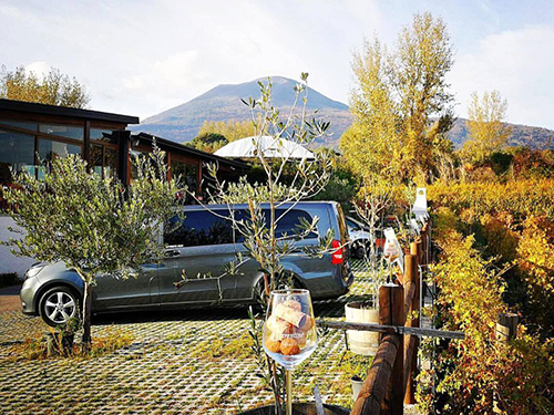 Naples  Italy pasta Wine Tour Tickets